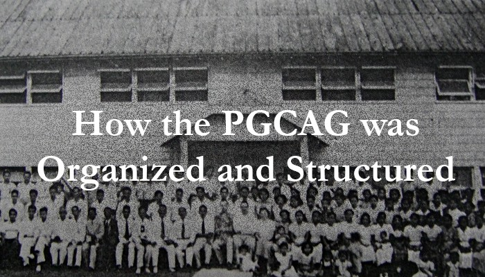 How the PGCAG was Organized and Structured